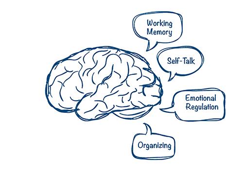 Executive Function Skills - CHADD